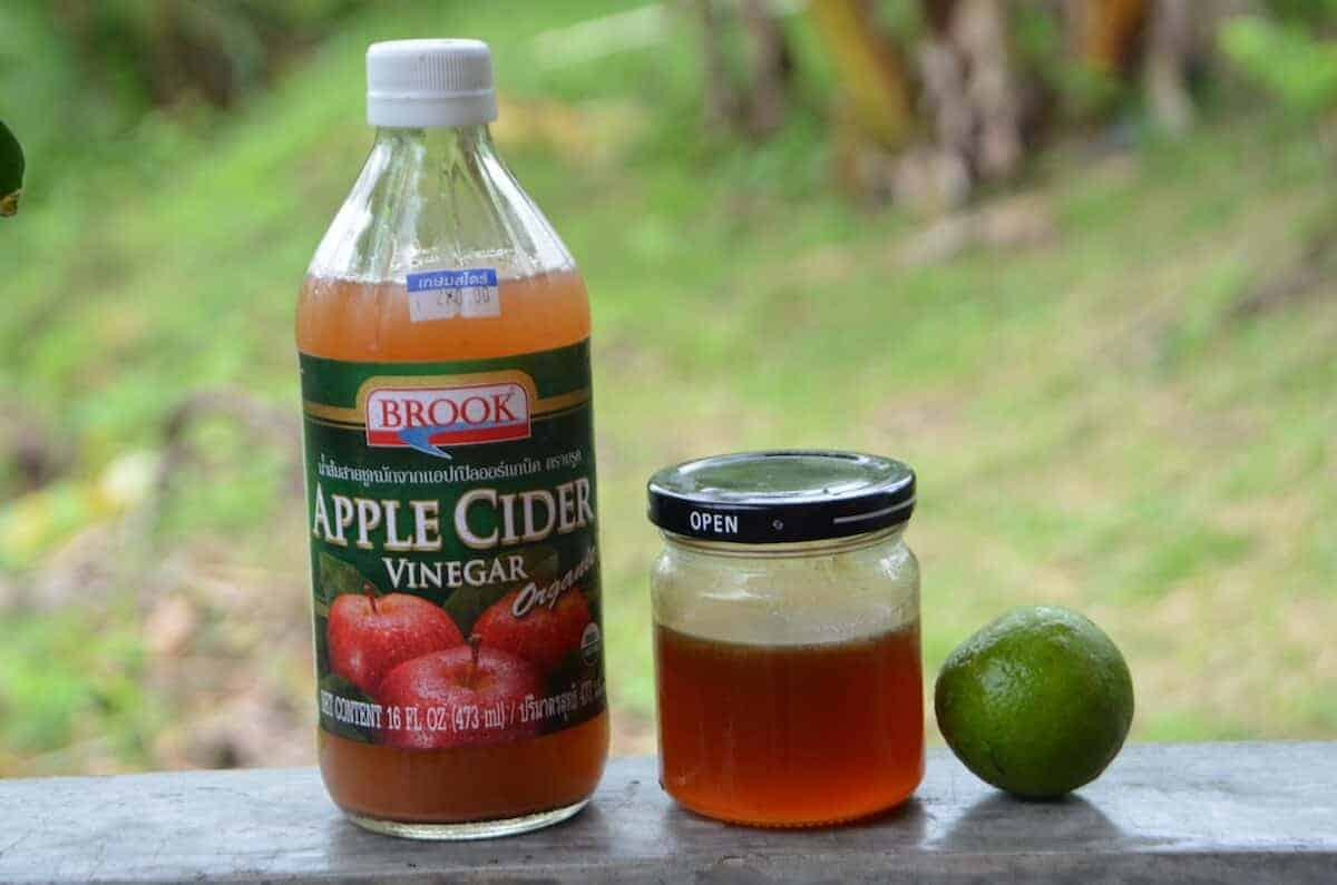 apple cider vinegar mold killer