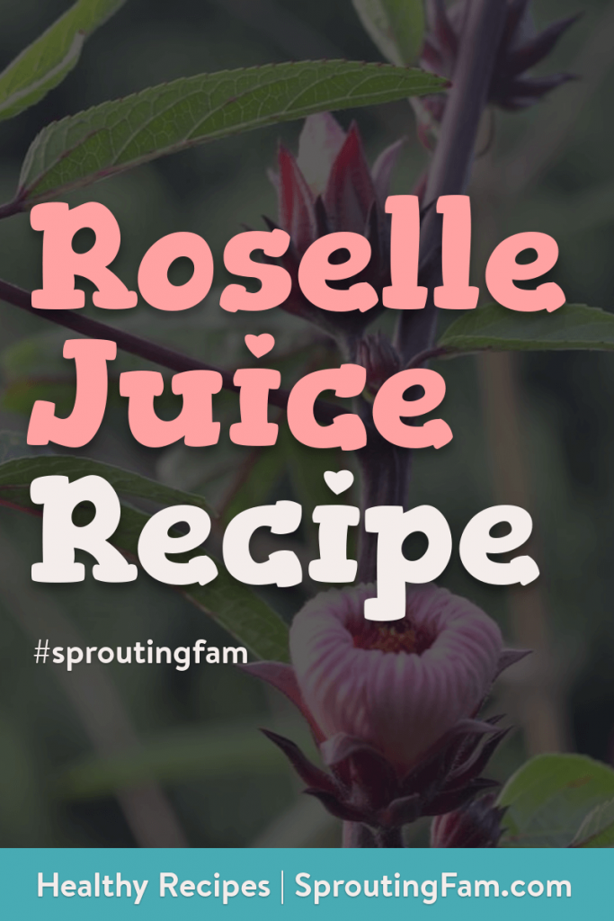 roselle juice recipe