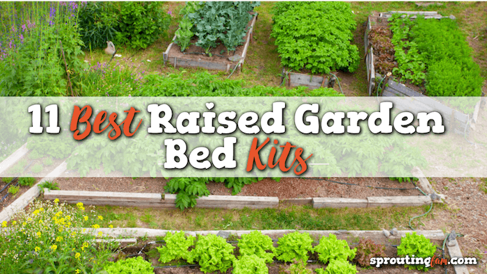 raised garden bed kit ideas and for sale